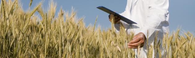 Независимая Сельскохозяйственная экспертиза в Саратове